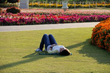 dubai miracles - цветочный сад 11