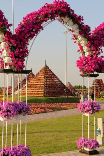 dubai miracles - цветочный сад 13