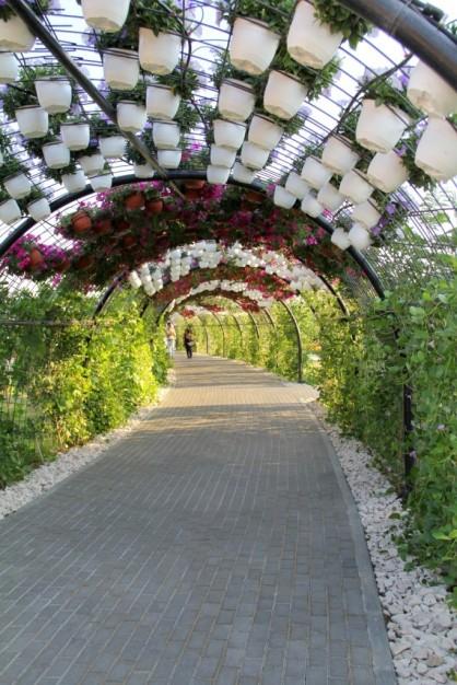dubai miracles - цветочный сад 14