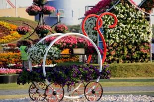 dubai miracles - цветочный сад 18