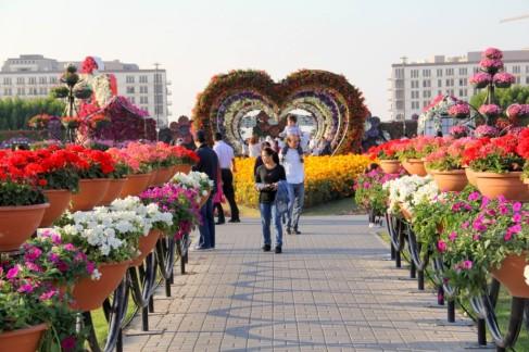 dubai miracles - цветочный сад 19