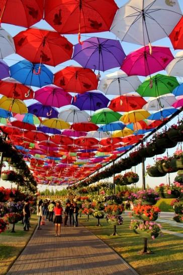 dubai miracles - цветочный сад 2