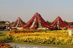 dubai miracles - цветочный сад 20