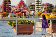 dubai miracles - цветочный сад 23