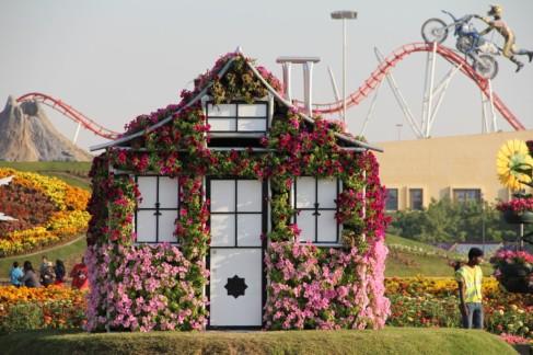 dubai miracles - цветочный сад 4