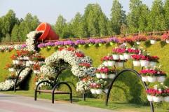 dubai miracles - цветочный сад 6