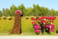 dubai miracles - цветочный сад 7
