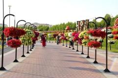 dubai miracles - цветочный сад 8